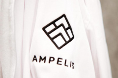 Ampelis Recovery Lodge